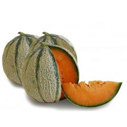 Melone Francesino Grande circa 2KG