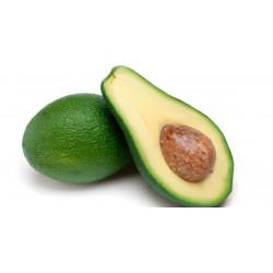 Avocado 1 Pz