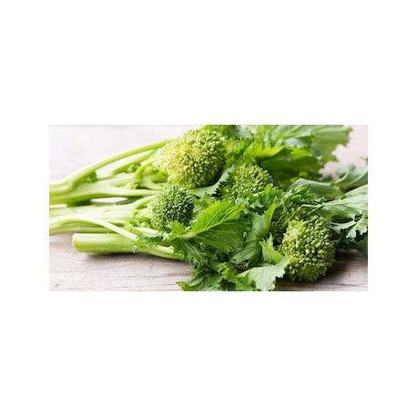 Broccoletti romaneschi 1kg