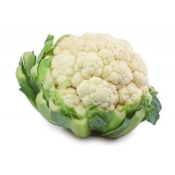 Cavolfiore Bianco 1kg