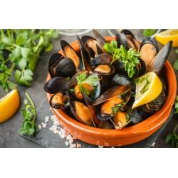 Cozze del Mediterraneo (2 Kg)