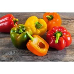 Peperoni Misti (1 Kg)