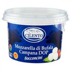 Mozzarella di bufala DOP CILENTO 300gr
