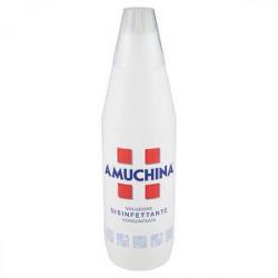 Soluzione disinfettante concentrata AMUCHINA 1l