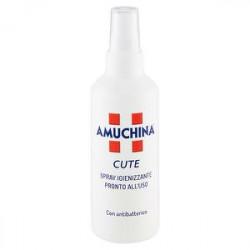 Soluzione disinfettante 10% AMUCHINA spray 200ml