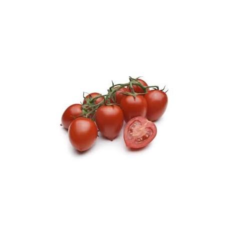 pomodori piccadilly 1kg